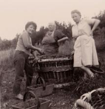A droite la grand mère maternelle d'Isabelle, au centre l'arrière grand mère.